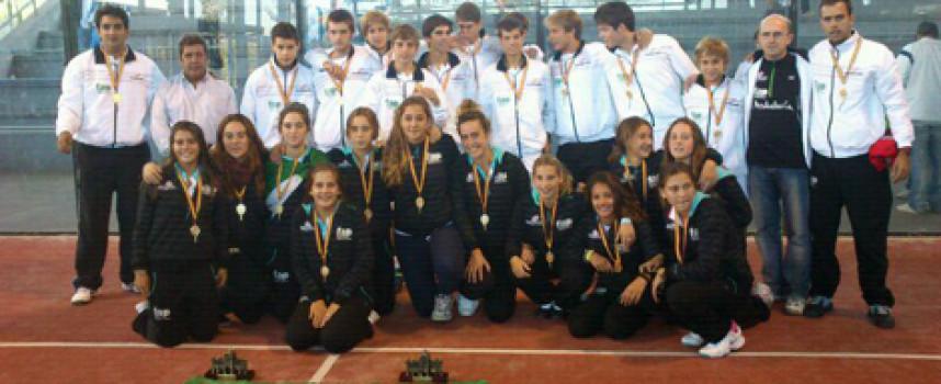 Andalucía brilla en la cima del Campeonato de España de Pádel de Menores por Selecciones Autonómicas